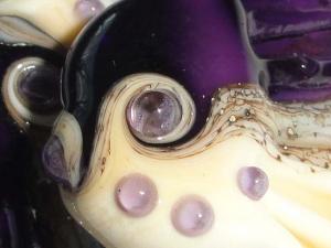 Violet Sea Tarts